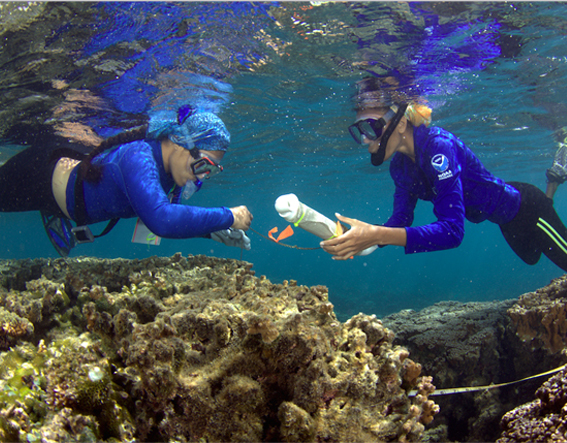Teacher and Student snorkeling over coral
